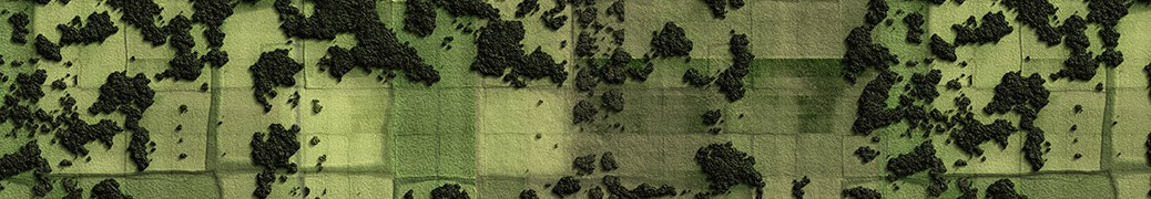 banner_1038_300_04